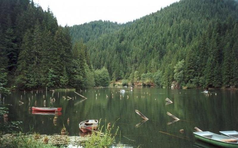 Red Lake - Killer Lake
